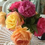 Gorgeous roses from their garden
