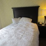 Φωτογραφία: Hampton Inn Pigeon Forge