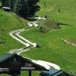 Alpine slide
