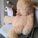 Giant teddy - last thing you need in a tiny room - occupies the only seat