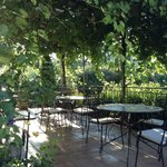 Breakfast under the grape arbor on fresh fruit & croissants