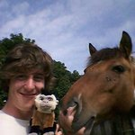 myself, a monkey (fake) and a horse (real)