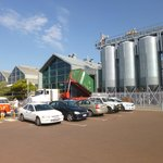 Little Creatures, brewery & hoppers