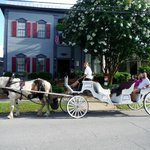 Carriage ride in front of Aerie B&B