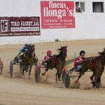 Trotting Races at Torre Del Ram