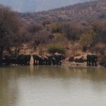 Foto de Tlopi Tented Camp