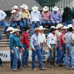 Cowboys in the arena