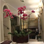 Orchids in the lobby