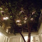 Beautiful tree with lanterns in the middle of the hotel
