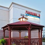 Meet your friends and coworkers and grill at our gazebo