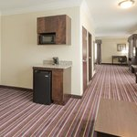 Φωτογραφία: Holiday Inn Express Hotel & Suites Raceland - Highway 90