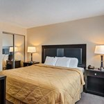 Executive Inn And Suites - Suite King