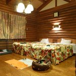 Фотография Hotel & Cottage_Shirakawasekinosato