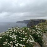 Cliffs of Moher...a few minutes drive away