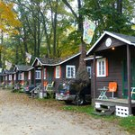 Cute, Homey Cabins