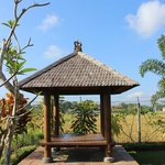 Villa Mandi - Balinese bed at the poll