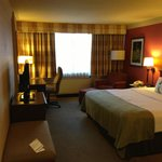 Φωτογραφία: Holiday Inn Toronto International Airport