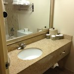 Foto van Holiday Inn Toronto International Airport