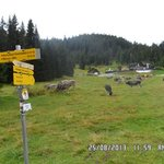 wildmoosalm, 45 mins walk from Seefeld