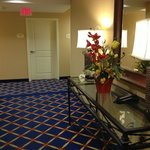 Foto di TownePlace Suites Fort Worth Downtown