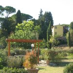 view from grounds of Frantoio delle Grazie