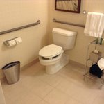 wheelchair accessible bathroom with strange rigged elevated seat