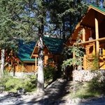 Foto de Cathedral Mountain Lodge