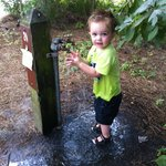 Our child loves the water spigot