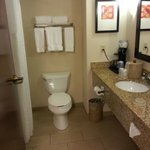 Foto van Holiday Inn Express & Suites Tupelo