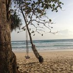 cute swing on the private beach