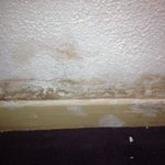 Mould in the rooom near the bed