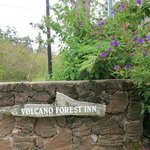 Photo de Volcano Forest Inn