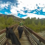 Horseback ride over Karl's Bridge
