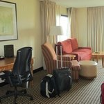 Φωτογραφία: Hilton Chicago Oak Brook Suites