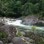 Mossman Gorge - a short drive away