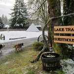 Φωτογραφία: Lake Trail Guesthouse