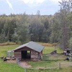 Photo de Alaska's Harvest B&B