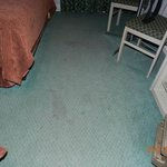 Stains in carpeting
