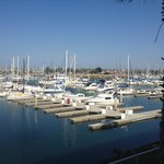 Foto de Hampton Inn Channel Islands Harbor