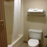 Φωτογραφία: BEST WESTERN PLUS Cedar Bluff Inn