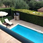 Olive Tree Pool Area 'spotless'