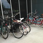 Bikes available to borrow