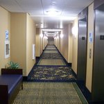 Foto di Holiday Inn Express Hotel & Suites Wilmington-Newark