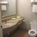 Foto de Holiday Inn Express Hotel & Suites Boston-Marlboro
