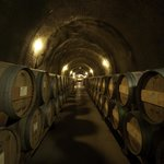 The magic happens in our Cabernet caves.