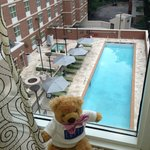 Фотография Homewood Suites by Hilton Atlanta Midtown