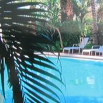 Bilde fra The Caribbean Court Boutique Hotel
