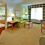 Foto di Holiday Inn Express Hotel & Suites Jackson - Flowood