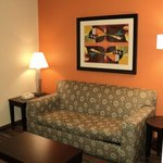 Φωτογραφία: Holiday Inn Opelousas