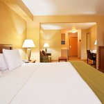 Фотография Holiday Inn Express Hotel & Suites Iron Mountain